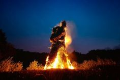 Wicker man burning at Butser Ancient Farm